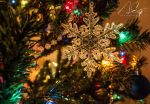 Christmas Time by Adkins-Photography