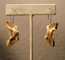 Small Vertebra Bone earrings by kittykat01