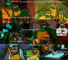 Turtle Collage by TheBatTurtle