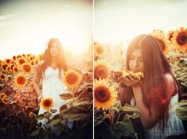 Kiss of the Sun by Tamerlana