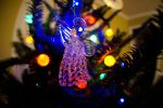 Fisheye Angel Ornament by LDFranklin