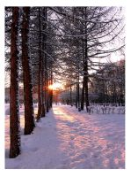 Winter 13 by aniabeata