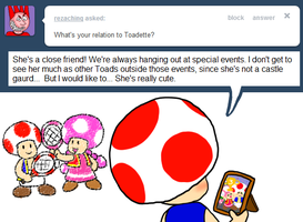 Ask Toad - Toadette by pocket-arsenal