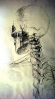 Human Spine by JonBland