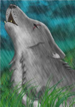 Wolf_in_the_rain by Neltharia