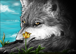 Wolf.:.Little Flower by WhiteSpiritWolf