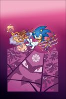 Sonic Universe 13 by Colorguy