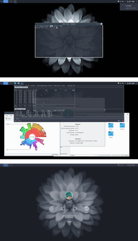 KDE Neon Developer Edition (Stable Branch) by chriptik
