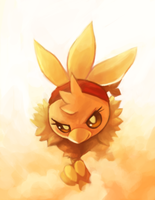 MC the Torchic by Middroo
