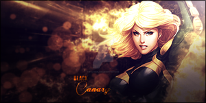 Black Canary by Kyle-Garland
