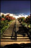Stairway to Heaven by aljhay
