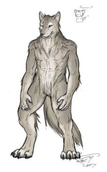 Altair - Werewolf colours by CrystalSeraph