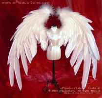 eps GABRIEL dollfie Wings 1 by eProductSales