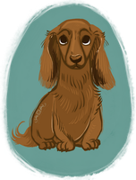 Doxie by StressedJenny
