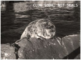 Club Soda, Not Seals by inkscribble