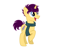 COMMISSION: Pony Redesign by RancorousRiverFish