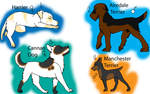 Mixed breed adopts by BleachTheNight