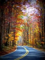 Fall Road by Nathan-Ruby