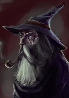 Speedy Gandalf by MrHarp