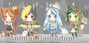 Animal Adoptable Auction - Closed by BaseAdopts