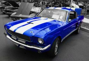 66 Shelby GT350 by Zelras