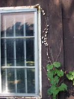 Roxstock shed window by RoxStock