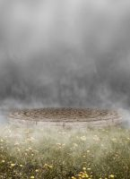 Foggy Grass BG 01 by the-night-bird