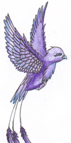 Bird of Boredom Colored by Lyystra