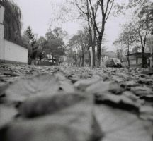 Lomo Lc Wide by spiti84