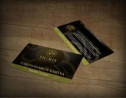 Tigris magnetic card by arkantal