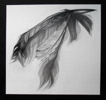 Feathers by GnomesAndCookies