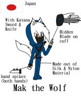 Assassin's Creed ref sheet: Mak the Wolf by Doggshort2
