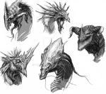 Dragon heads sketches by Haridimus