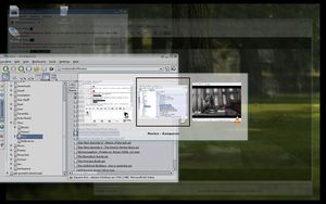 Desktop 6.09.06: xgl by aurelias