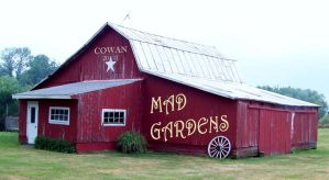 Mad Gardens III by MadGardens