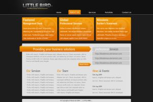 Business Template Version 2 by abodemous