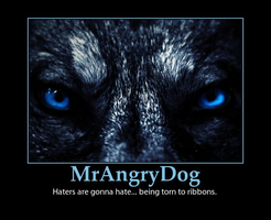 My Demotivator Concerning Haters And Harassers by MrAngryDog
