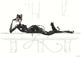 Catwoman Colour by BevisMusson