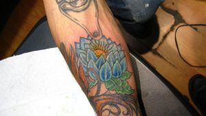 lotus flower...cover up by flyingants