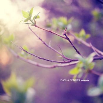 only you by onixa