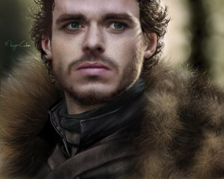 Robb Stark: the king in the north by MaayanCohen