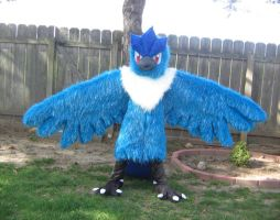 Articuno Cosplay 2 by chibiansem02