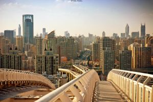 Shanghai. From the Lupu bridge. by Zhen-Yang
