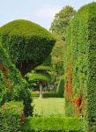 Levens Hall 106 by Forestina-Fotos