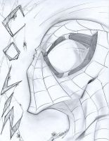Spiderman Sketchshot by StevenSanchez