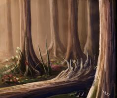 Forest by Saidypoo