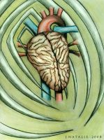 The heart brain by TheRedBamboo