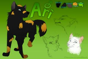 Ari Reference by Nightrizer