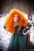 Merida: Merry Christmas! (Happy Holidays!) by kanracakes