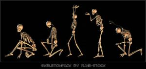 Skeleton_pack1 by Fune-Stock